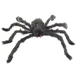 włochaty czarny pająk