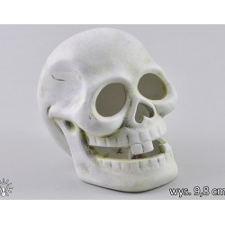 Podświetlana czaszka ceramiczna